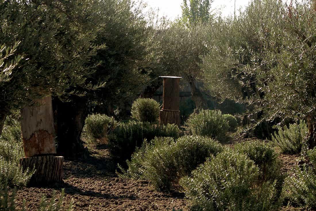 Arqueopinto, el parque de la prehistoria en Madrid